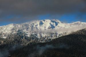 Βουνοκορφή